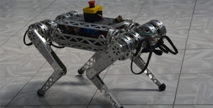 """TEKNOLOJİ Ana Sayfa TEKNOLOJİ Uzaya gitmek isteyen ilk Türk robot """"Miniada"""""""